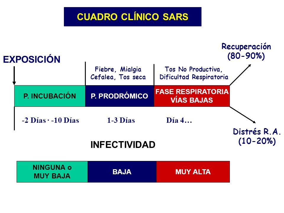 P. INCUBACIÓNP. PRODRÓMICO FASE RESPIRATORIA VÍAS BAJAS NINGUNA o MUY BAJA BAJAMUY ALTA INFECTIVIDAD EXPOSICIÓN CUADRO CLÍNICO SARS -2 Días · -10 Días