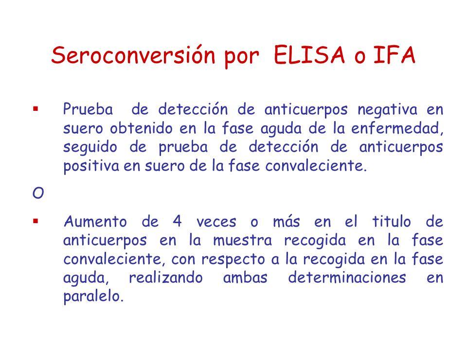 Seroconversión por ELISA o IFA Prueba de detección de anticuerpos negativa en suero obtenido en la fase aguda de la enfermedad, seguido de prueba de d