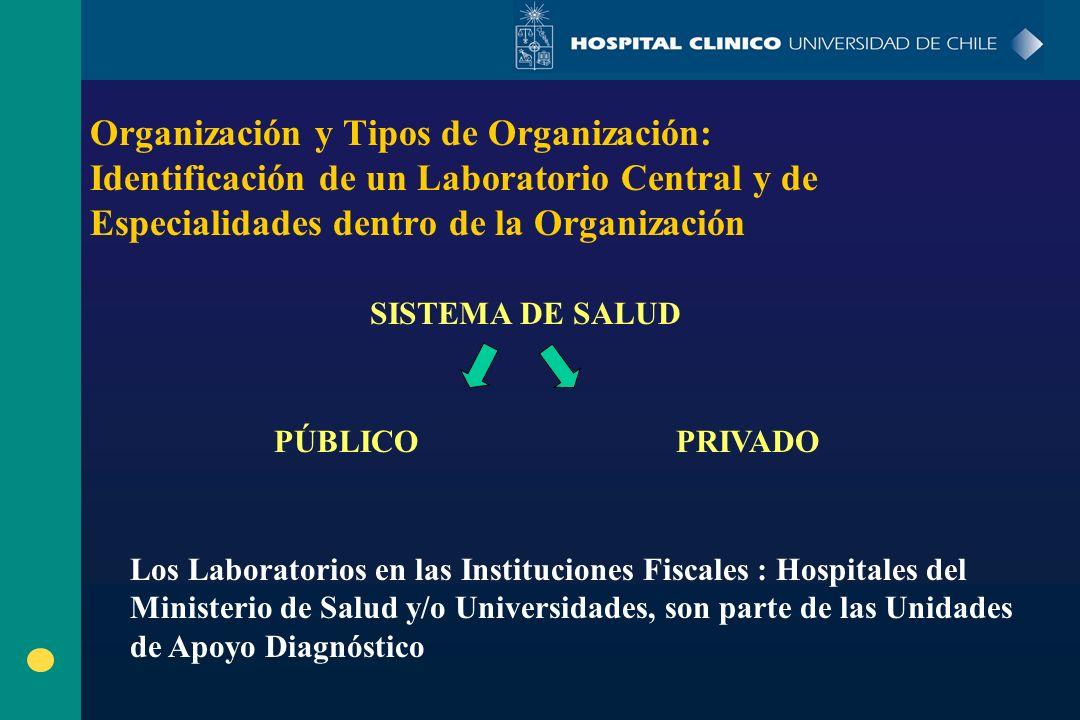Organización y Tipos de Organización: Identificación de un Laboratorio Central y de Especialidades dentro de la Organización SISTEMA DE SALUD PÚBLICO