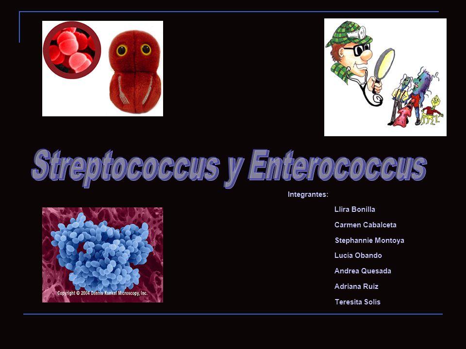 Identificación VITEK 2 Y PSA AntibióticoResultado BencilpenicilinaS Cefotaxima (Meningitis)S Cefotaxima (No Meningitis)S Ceftriaxona (Meningitis)S Ceftriaxona (No Meningitis)S CloranfenicolS EritromicinaR LevofloxacinoS LinezoidS MoxifloxacinoS OfloxacinoS TetraciclinaS Trimetoprima/SulfametoxazolR VancomicinaS Aislamiento: Streptococcus pneumoniae