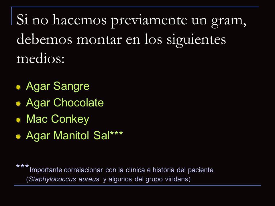 Si no hacemos previamente un gram, debemos montar en los siguientes medios: Agar Sangre Agar Chocolate Mac Conkey Agar Manitol Sal*** *** Importante c