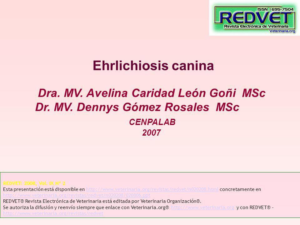 Ehrlichiosis canina Dra. MV. Avelina Caridad León Goñi MSc Dr. MV. Dennys Gómez Rosales MSc CENPALAB 2007 REDVET: 2008, Vol. IX Nº 2 Esta presentación