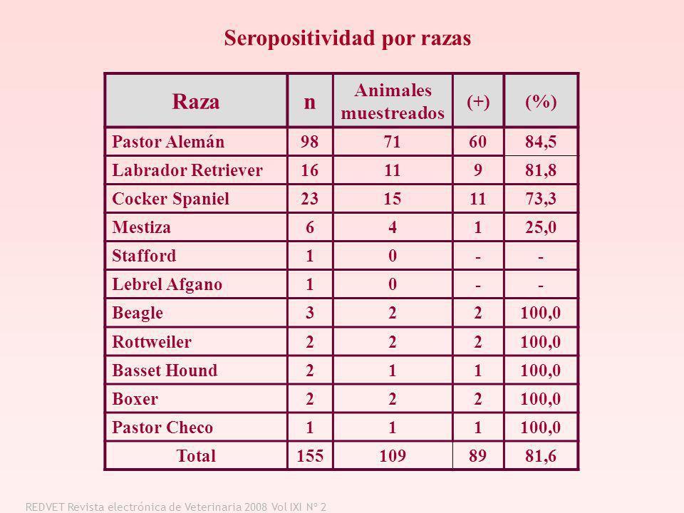 Razan Animales muestreados (+)(%) Pastor Alemán98716084,5 Labrador Retriever1611981,8 Cocker Spaniel23151173,3 Mestiza64125,0 Stafford10-- Lebrel Afga