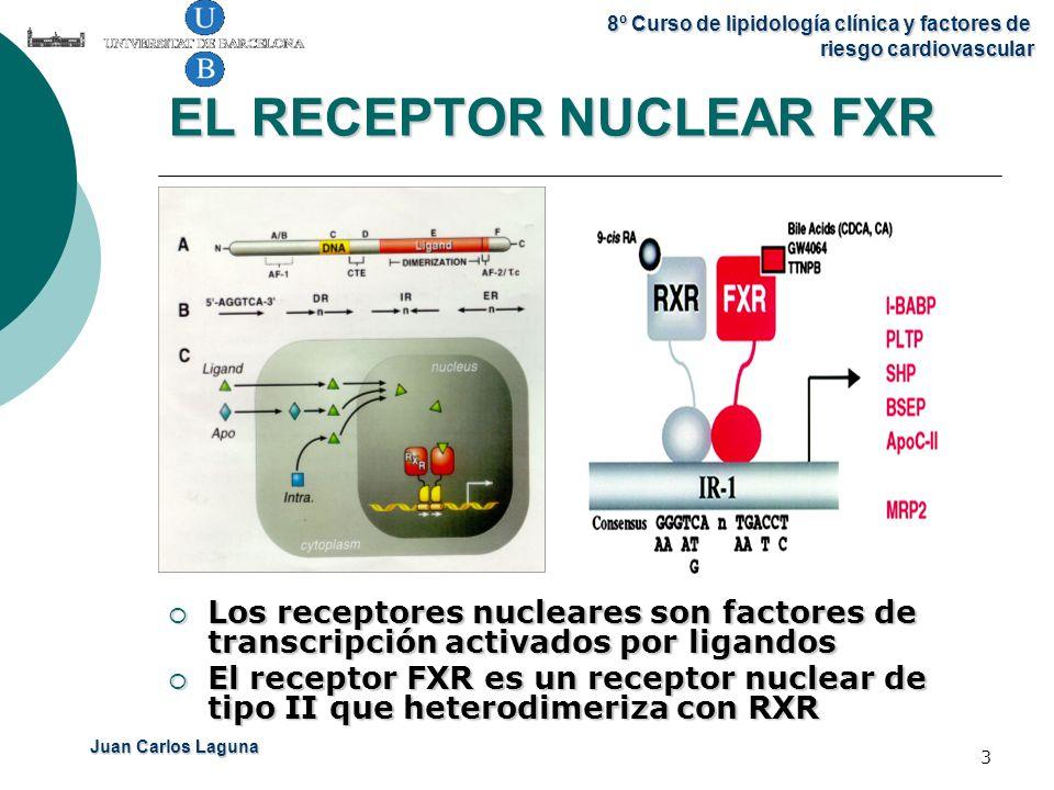 Juan Carlos Laguna 8º Curso de lipidología clínica y factores de riesgo cardiovascular 3 EL RECEPTOR NUCLEAR FXR Los receptores nucleares son factores