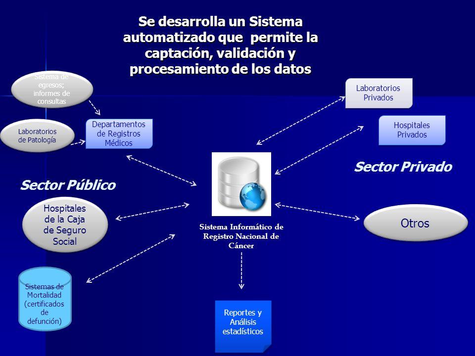 Se desarrolla un Sistema automatizado que permite la captación, validación y procesamiento de los datos Sistema Informático de Registro Nacional de Cá