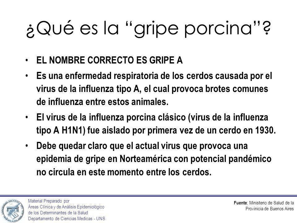 Fuente ; Ministerio de Salud de la Provinicia de Buenos Aires Material Preparado por Áreas Clínica y de Análisis Epidemiológico de los Determinantes de la Salud Departamento de Ciencias Medicas - UNS ¿Qué es la gripe porcina.