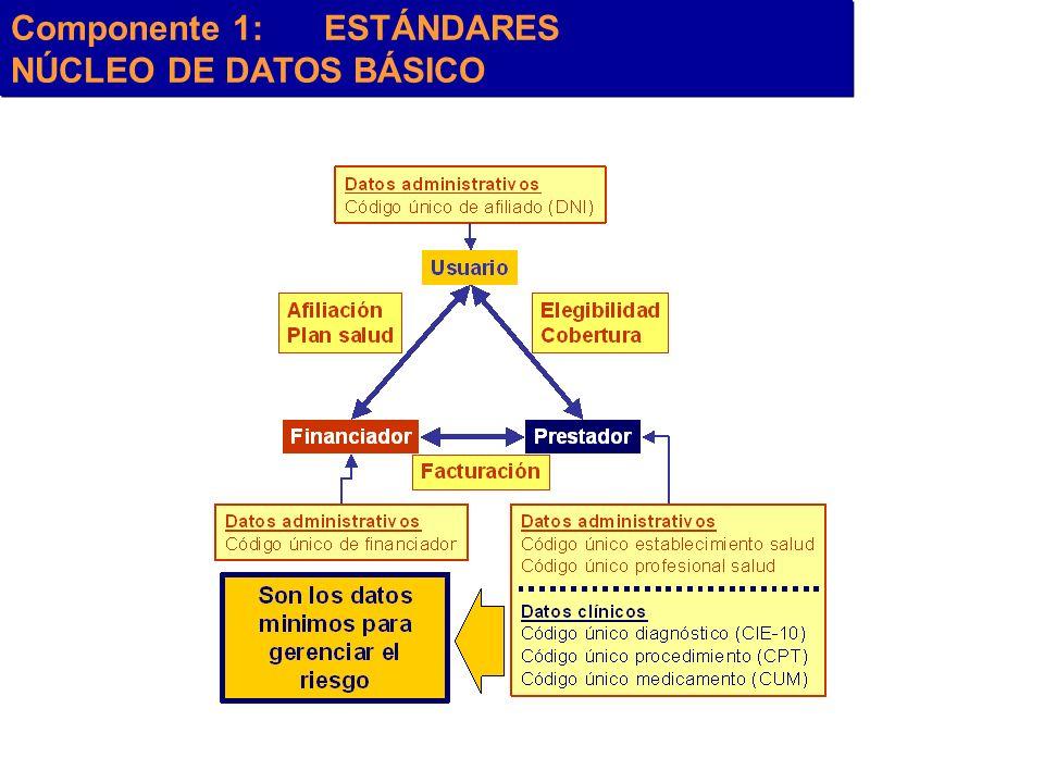 Componente 1:ESTÁNDARES NÚCLEO DE DATOS BÁSICO