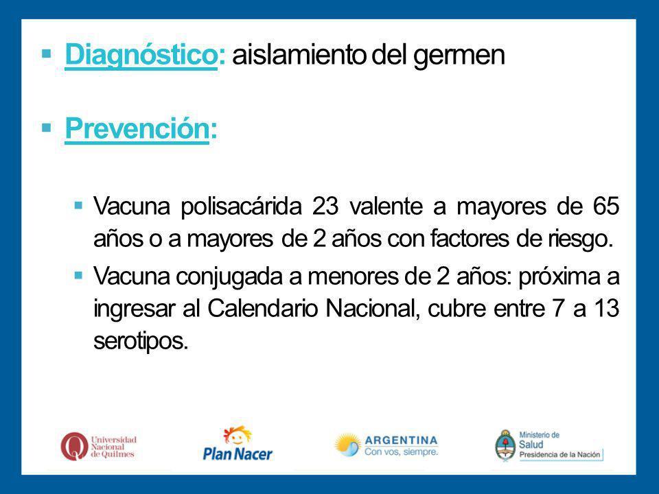 Diagnóstico: aislamiento del germen Prevención: Vacuna polisacárida 23 valente a mayores de 65 años o a mayores de 2 años con factores de riesgo.