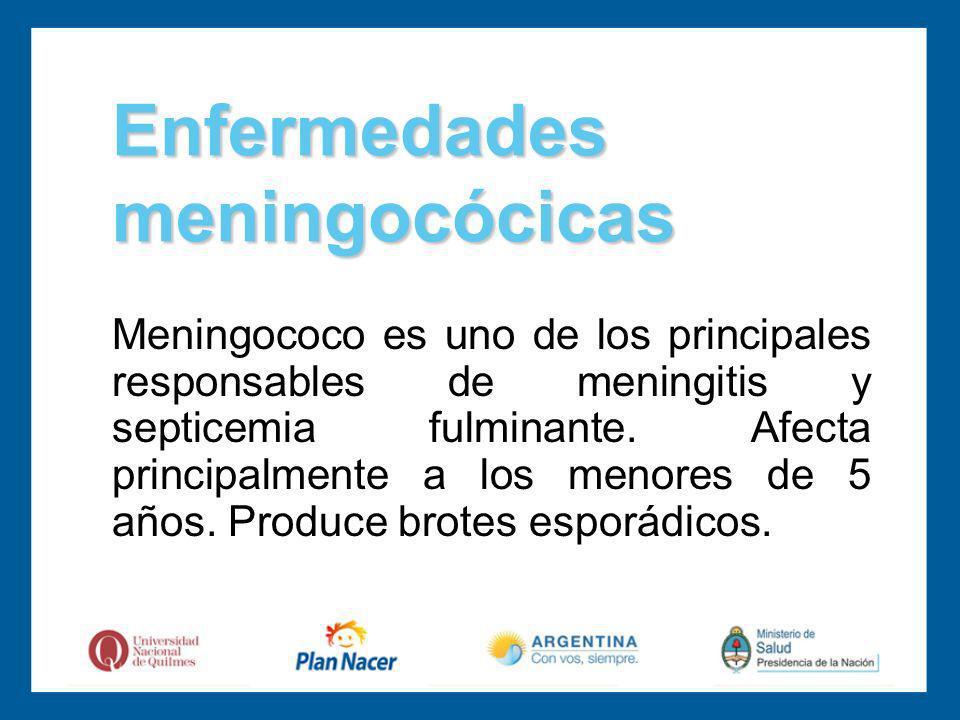 Meningococo es uno de los principales responsables de meningitis y septicemia fulminante.