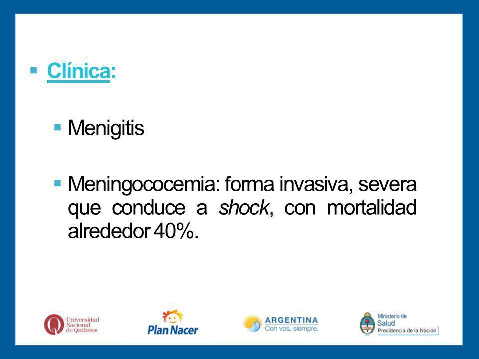 Clínica: Menigitis Meningococemia: forma invasiva, severa que conduce a shock, con mortalidad alrededor 40%.