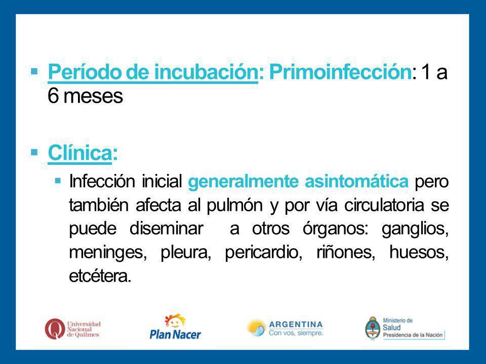 Período de incubación: Primoinfección: 1 a 6 meses Clínica: Infección inicial generalmente asintomática pero también afecta al pulmón y por vía circulatoria se puede diseminar a otros órganos: ganglios, meninges, pleura, pericardio, riñones, huesos, etcétera.