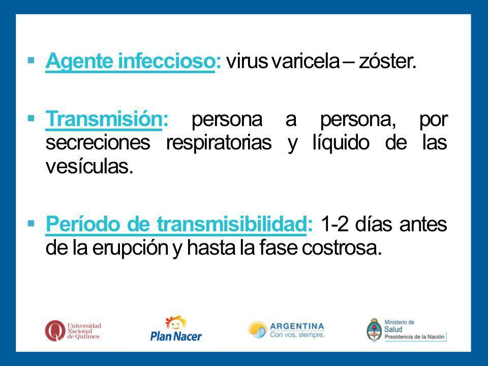Agente infeccioso: virus varicela – zóster.