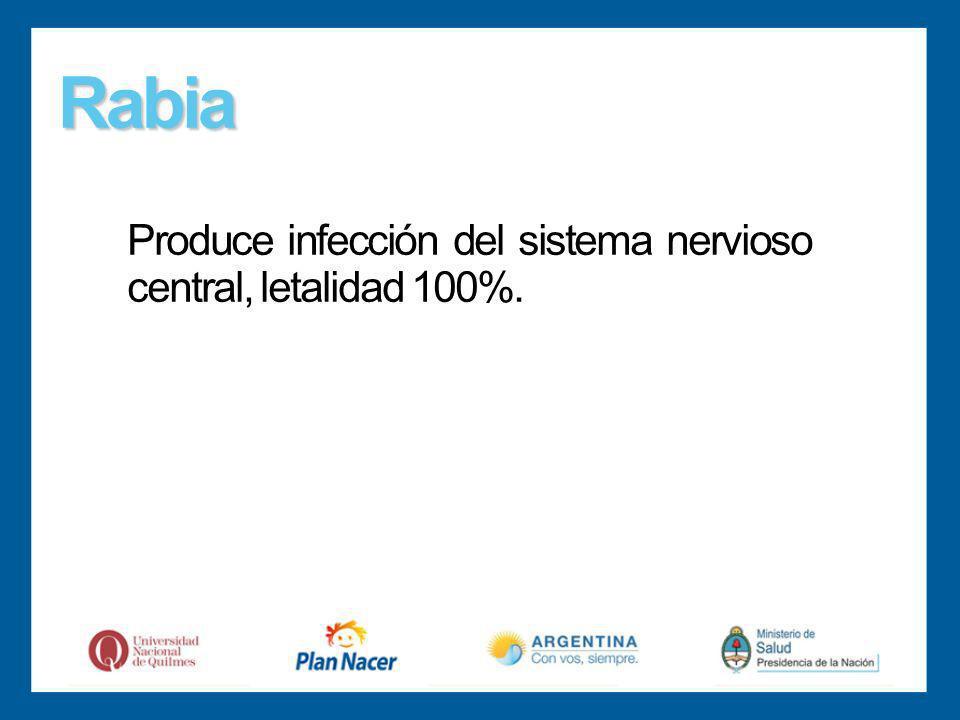 Rabia Produce infección del sistema nervioso central, letalidad 100%.