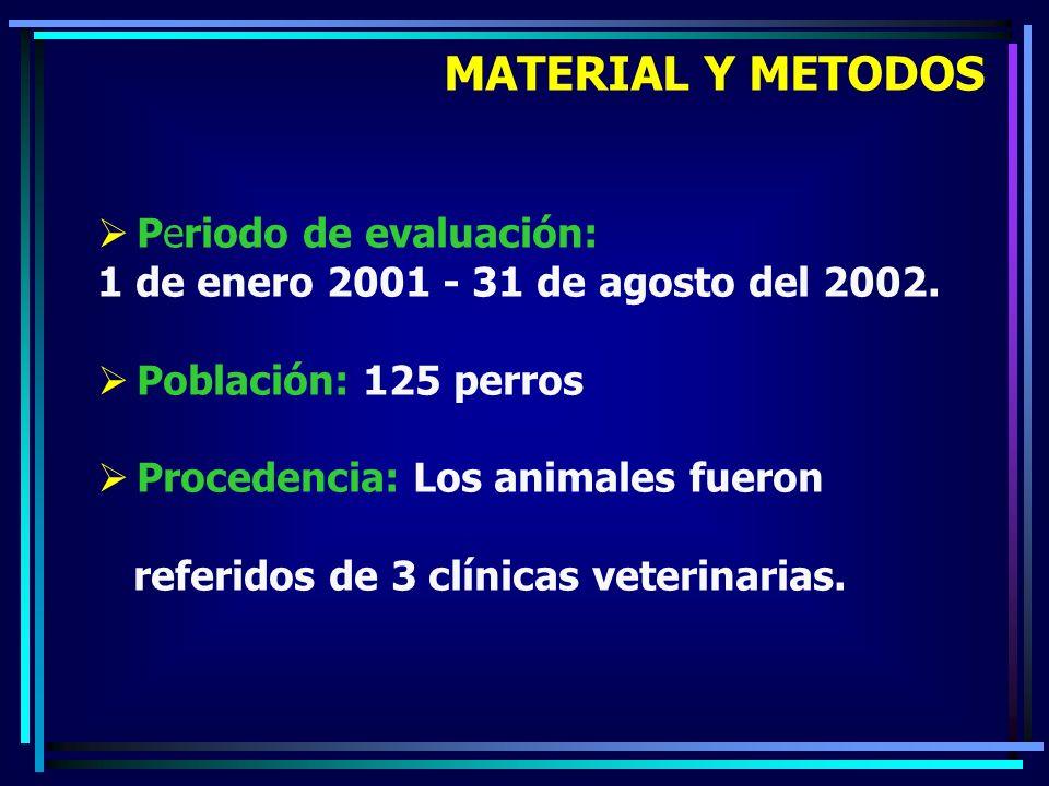 Periodo de evaluación: 1 de enero 2001 - 31 de agosto del 2002. Población: 125 perros Procedencia: Los animales fueron referidos de 3 clínicas veterin