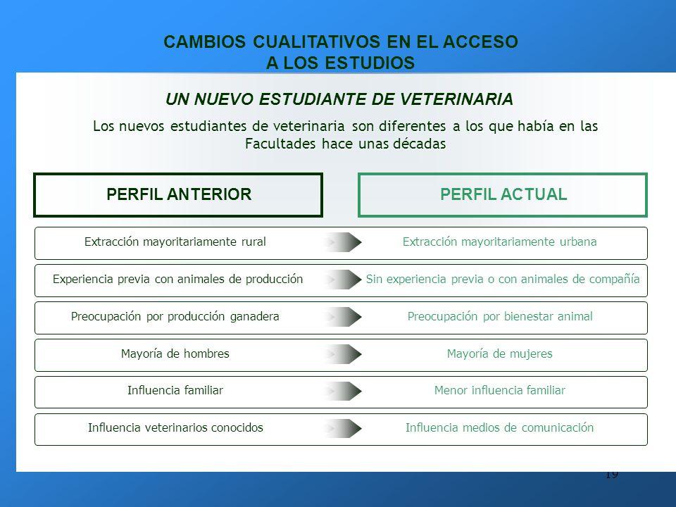 18 OTROS ÁMBITOS PROFESIONALES Los veterinarios tienen una formación muy flexible, que les posibilita el acceso a muchos ámbitos laborales, relacionados en mayor o menor medida con los puestos de trabajo tradicionales MEDIO AMBIENTE Es un campo con gran proyección económica y atractivo para los veterinarios.