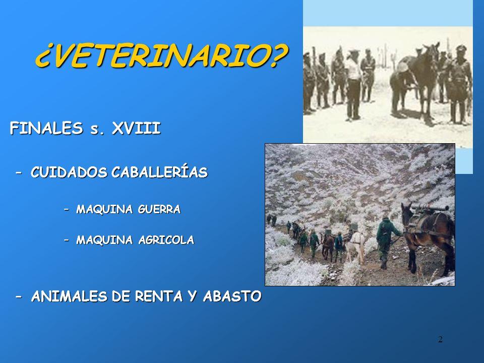 2 ¿VETERINARIO.FINALES s. XVIIIFINALES s.