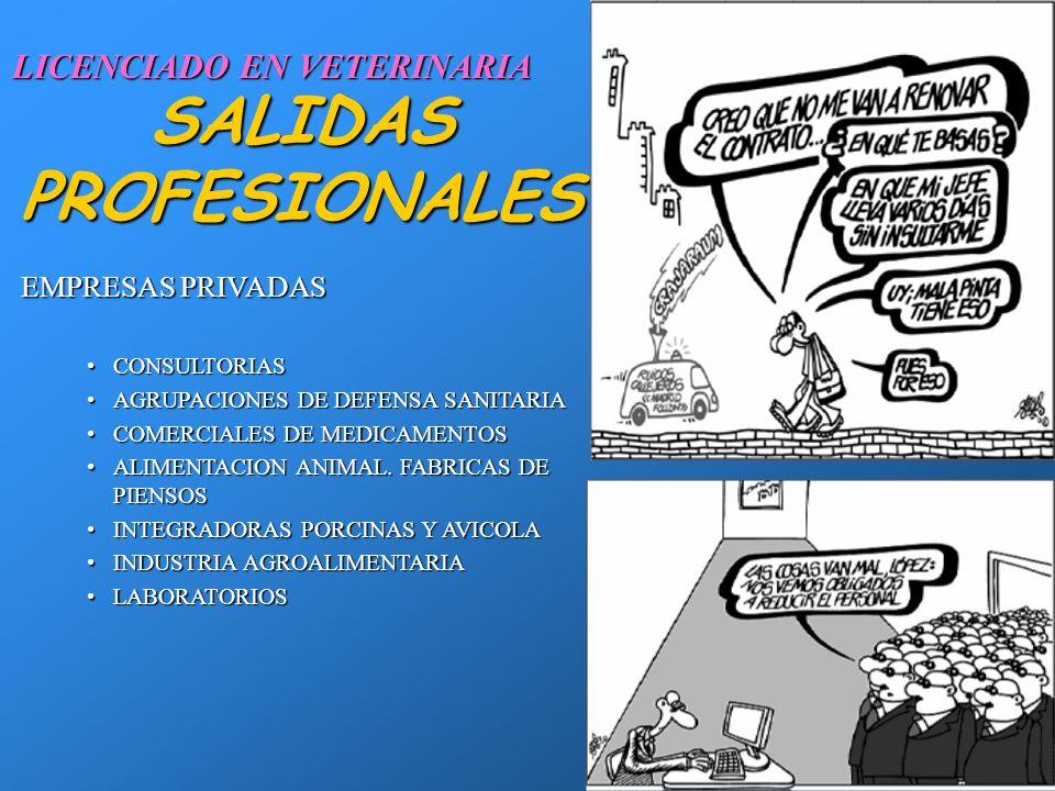 28 SALIDAS PROFESIONALES EJERCICIO LIBRE (AUTONOMOS)EJERCICIO LIBRE (AUTONOMOS) CLINICA ANIMALES DE COMPAÑÍACLINICA ANIMALES DE COMPAÑÍA CLINICA GRANDES ANIMALESCLINICA GRANDES ANIMALES PRODUCCION ANIMALPRODUCCION ANIMAL AGRUPACION DE DEFENSA SANITARIAAGRUPACION DE DEFENSA SANITARIA CAMPAÑAS DE SANEAMIENTO GANADEROCAMPAÑAS DE SANEAMIENTO GANADERO BROMATOLOGIABROMATOLOGIA DOCENCIADOCENCIA LICENCIADO EN VETERINARIA