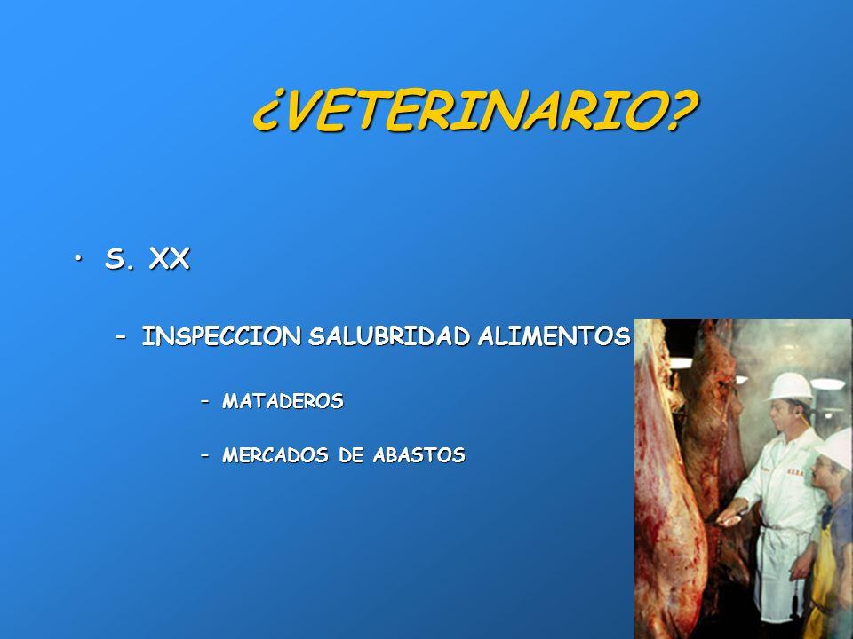 2 ¿VETERINARIO? FINALES s. XVIIIFINALES s. XVIII –CUIDADOS CABALLERÍAS –MAQUINA GUERRA –MAQUINA AGRICOLA –ANIMALES DE RENTA Y ABASTO