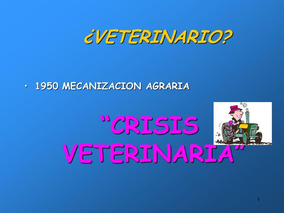 4 ¿VETERINARIO? 1950 MECANIZACION AGRARIA1950 MECANIZACION AGRARIA CRISIS VETERINARIA