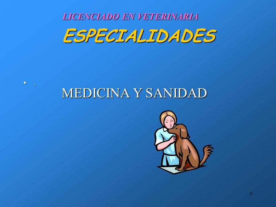 6 ESPECIALIDADES. LICENCIADO EN VETERINARIA MEDICINA Y SANIDAD