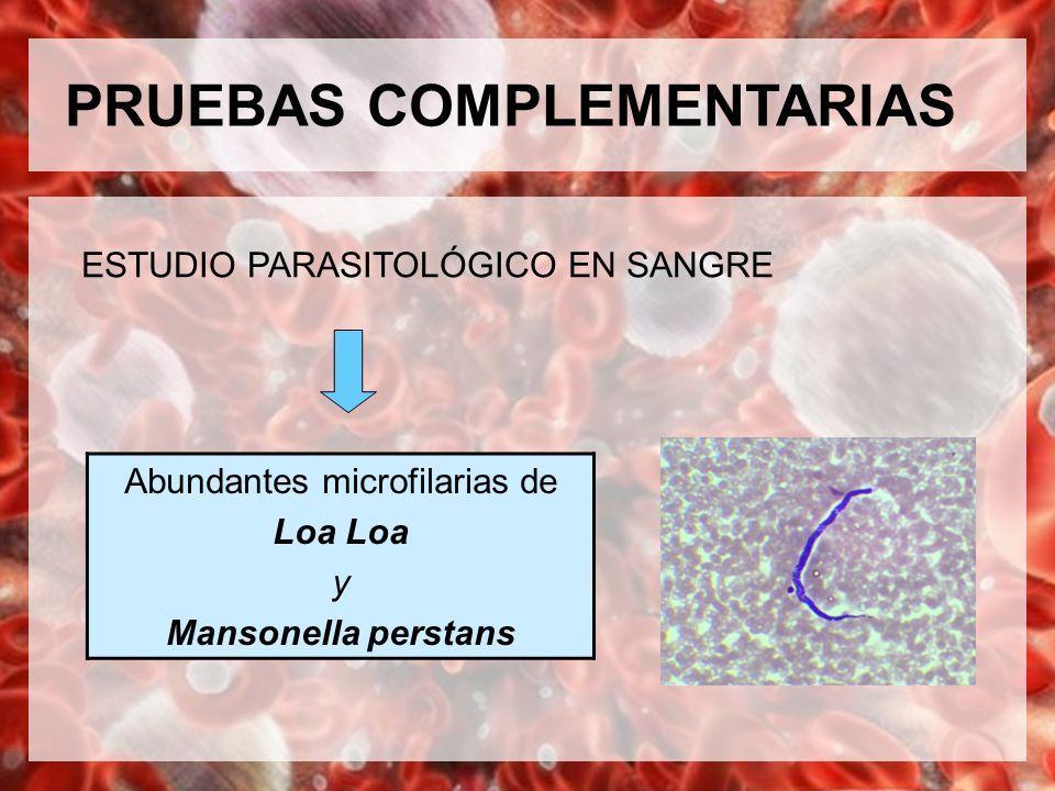 PRUEBAS COMPLEMENTARIAS ESTUDIO PARASITOLÓGICO EN SANGRE Abundantes microfilarias de Loa y Mansonella perstans
