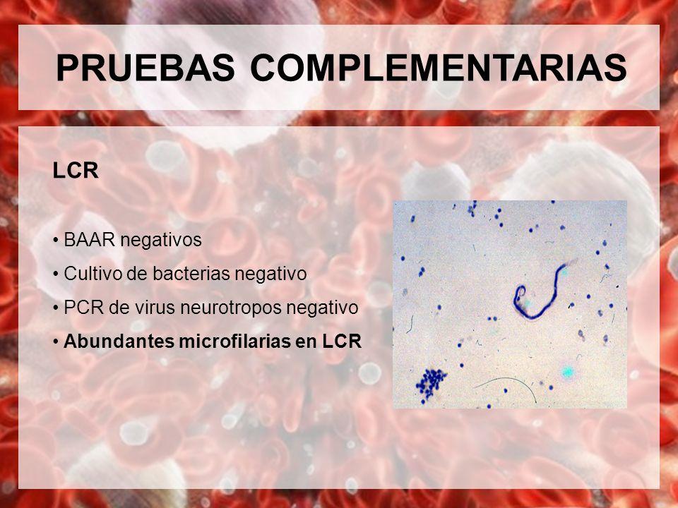 PRUEBAS COMPLEMENTARIAS LCR BAAR negativos Cultivo de bacterias negativo PCR de virus neurotropos negativo Abundantes microfilarias en LCR
