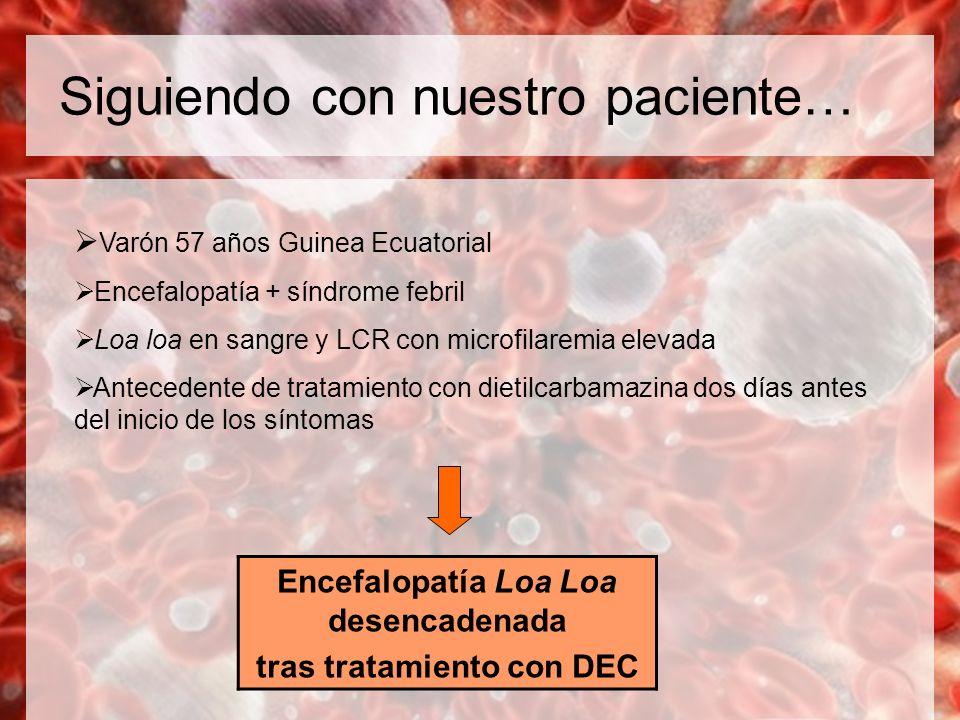 Siguiendo con nuestro paciente… Varón 57 años Guinea Ecuatorial Encefalopatía + síndrome febril Loa loa en sangre y LCR con microfilaremia elevada Ant