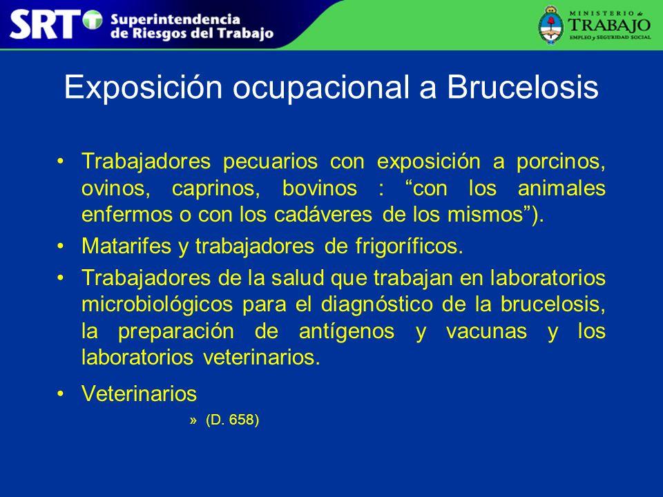 Exposición ocupacional a Brucelosis Trabajadores pecuarios con exposición a porcinos, ovinos, caprinos, bovinos : con los animales enfermos o con los