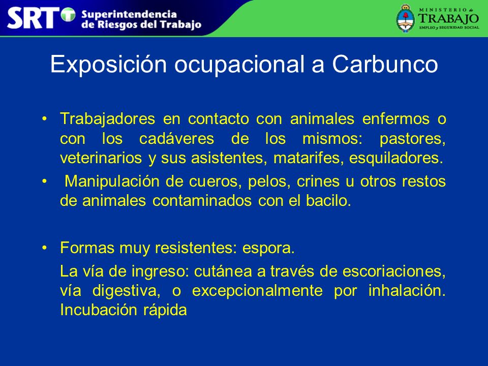 Exposición ocupacional a Carbunco Trabajadores en contacto con animales enfermos o con los cadáveres de los mismos: pastores, veterinarios y sus asist