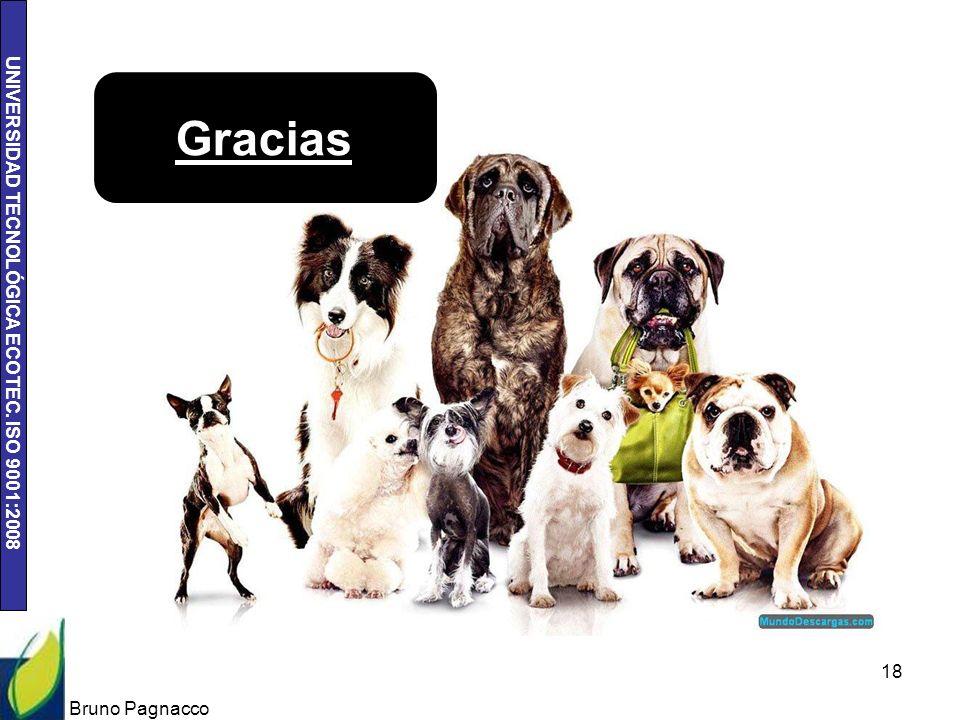 UNIVERSIDAD TECNOLÓGICA ECOTEC. ISO 9001:2008 Bruno Pagnacco 18 Gracias