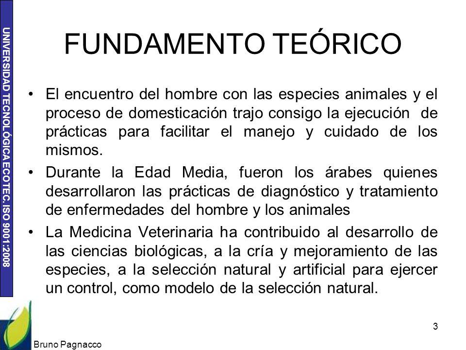 UNIVERSIDAD TECNOLÓGICA ECOTEC. ISO 9001:2008 FUNDAMENTO TEÓRICO El encuentro del hombre con las especies animales y el proceso de domesticación trajo