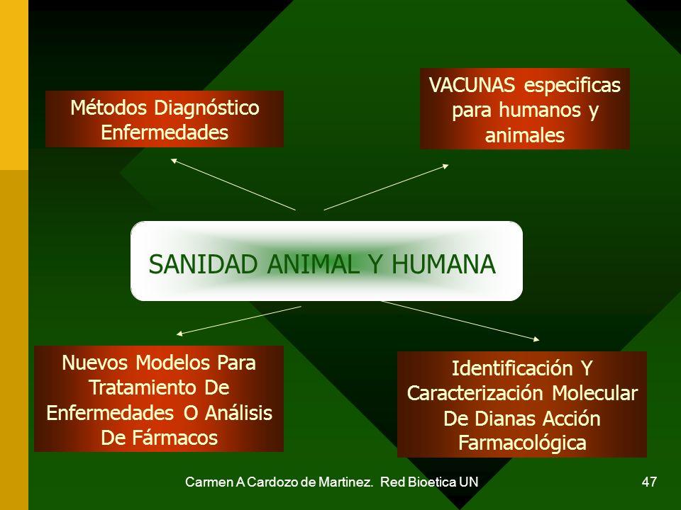 Carmen A Cardozo de Martinez. Red Bioetica UN 47 Métodos Diagnóstico Enfermedades VACUNAS especificas para humanos y animales Nuevos Modelos Para Trat