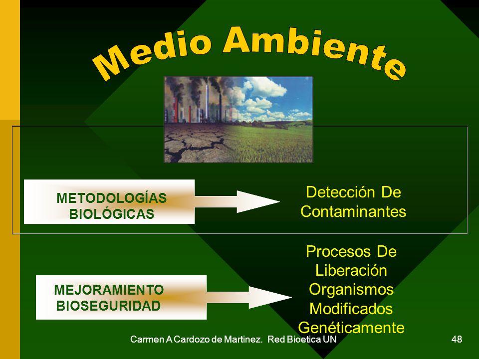 Carmen A Cardozo de Martinez. Red Bioetica UN 48 Detección De Contaminantes Procesos De Liberación Organismos Modificados Genéticamente MEJORAMIENTO B