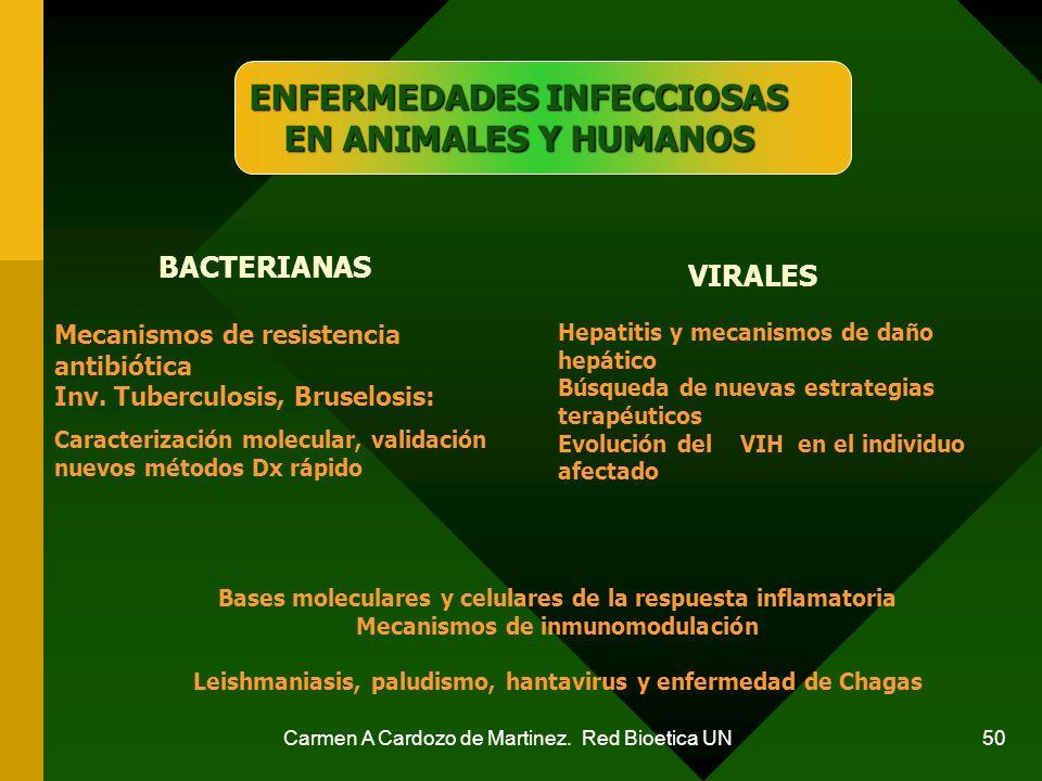 Carmen A Cardozo de Martinez. Red Bioetica UN 50 Bases moleculares y celulares de la respuesta inflamatoria Mecanismos de inmunomodulación Leishmanias