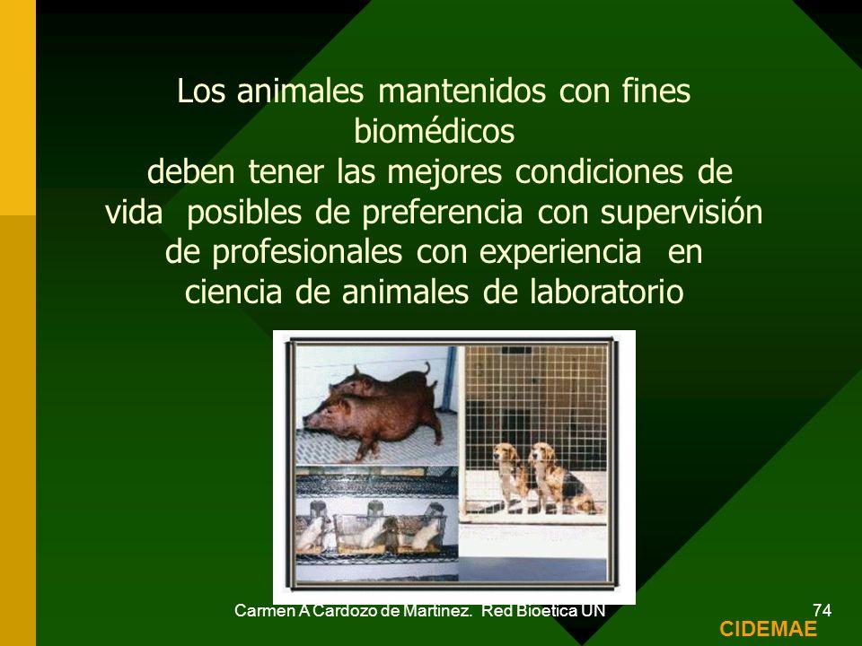 Carmen A Cardozo de Martinez. Red Bioetica UN 74 Los animales mantenidos con fines biomédicos deben tener las mejores condiciones de vida posibles de