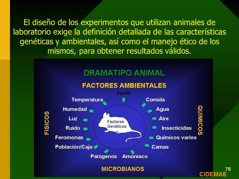 Carmen A Cardozo de Martinez. Red Bioetica UN 79 El diseño de los experimentos que utilizan animales de laboratorio exige la definición detallada de l