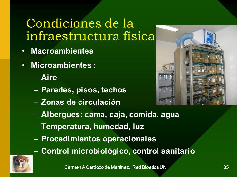 Carmen A Cardozo de Martinez. Red Bioetica UN 85 Condiciones de la infraestructura física Macroambientes Microambientes : –Aire –Paredes, pisos, techo