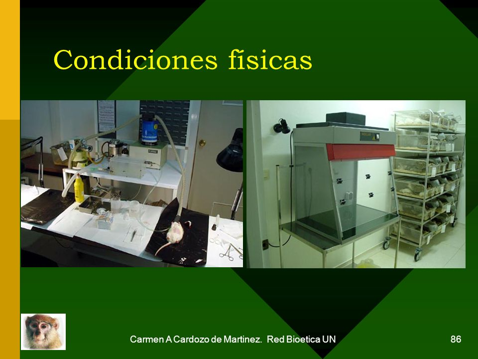 Carmen A Cardozo de Martinez. Red Bioetica UN 86 Condiciones físicas