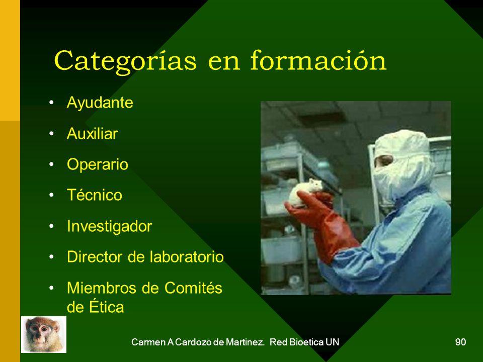 Carmen A Cardozo de Martinez. Red Bioetica UN 90 Categorías en formación Ayudante Auxiliar Operario Técnico Investigador Director de laboratorio Miemb