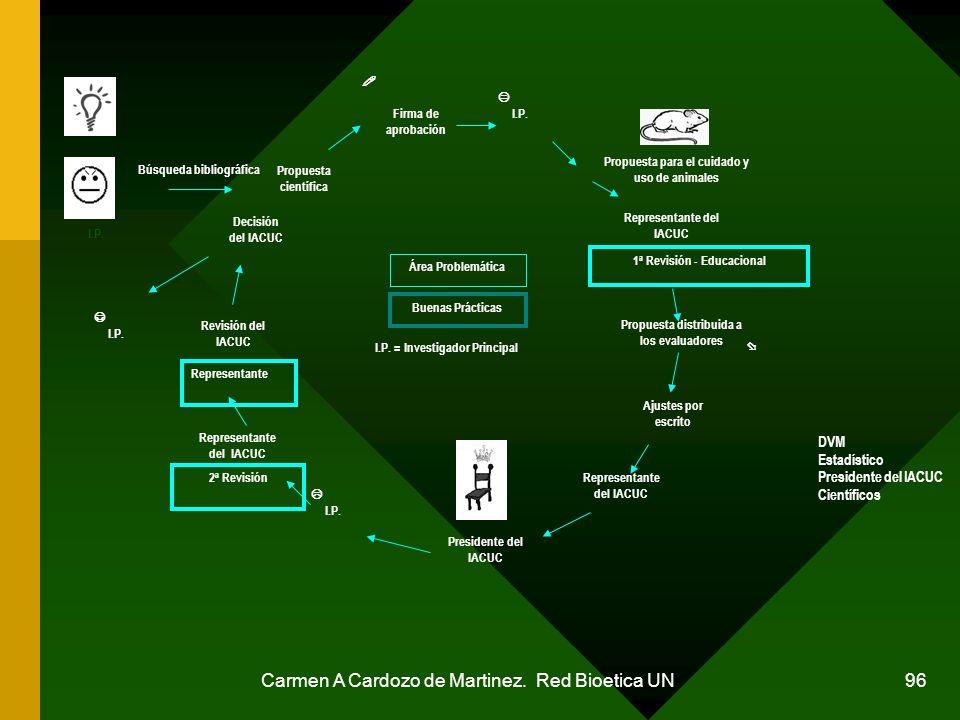Carmen A Cardozo de Martinez. Red Bioetica UN 96 Área Problemática Buenas Prácticas I.P. = Investigador Principal I.P. Propuesta para el cuidado y uso