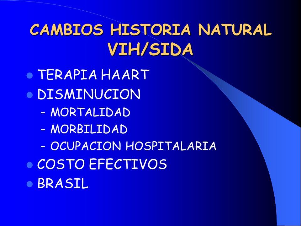 CAMBIOS HISTORIA NATURAL VIH/SIDA TERAPIA HAART DISMINUCION – MORTALIDAD – MORBILIDAD – OCUPACION HOSPITALARIA COSTO EFECTIVOS BRASIL