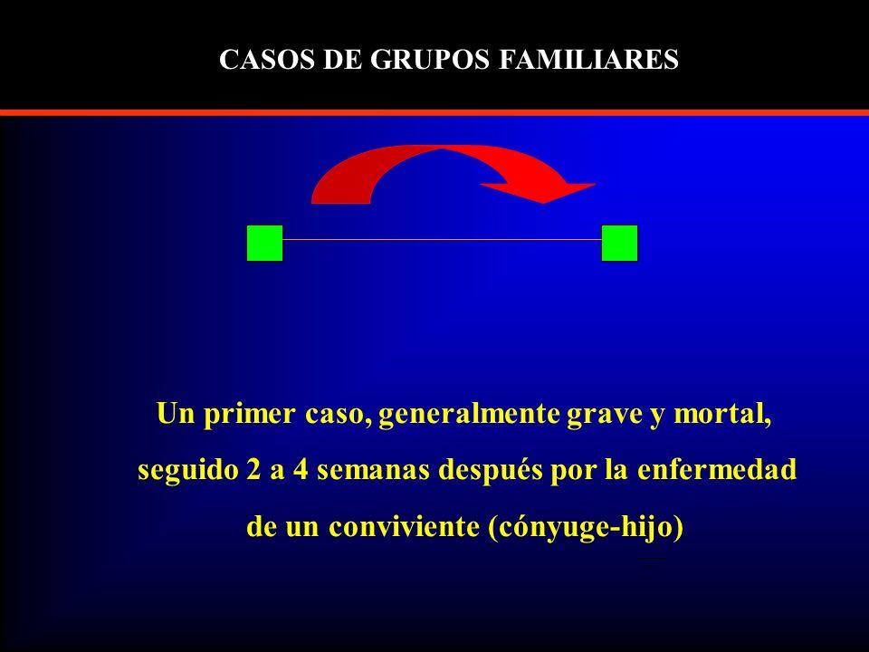 Un primer caso, generalmente grave y mortal, seguido 2 a 4 semanas después por la enfermedad de un conviviente (cónyuge-hijo) CASOS DE GRUPOS FAMILIARES
