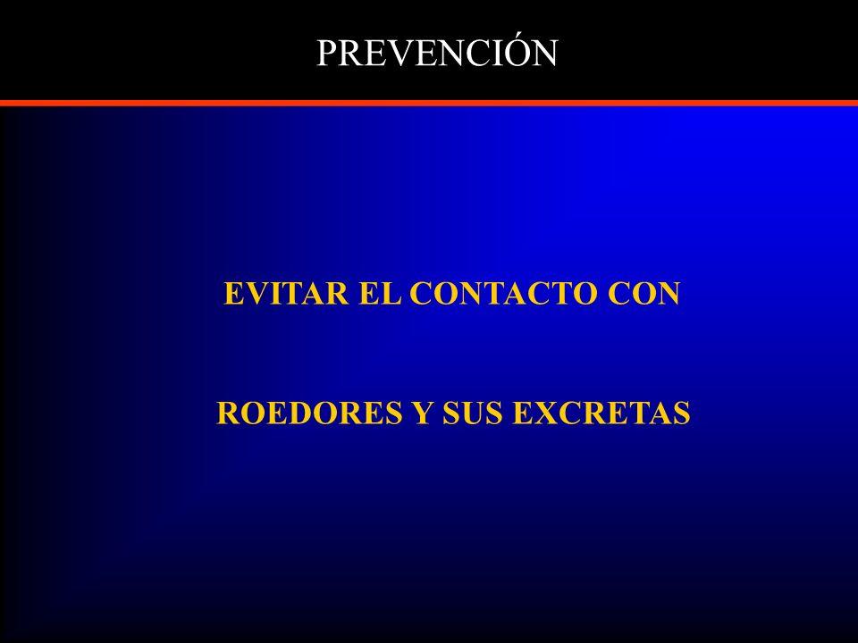 PREVENCIÓN EVITAR EL CONTACTO CON ROEDORES Y SUS EXCRETAS