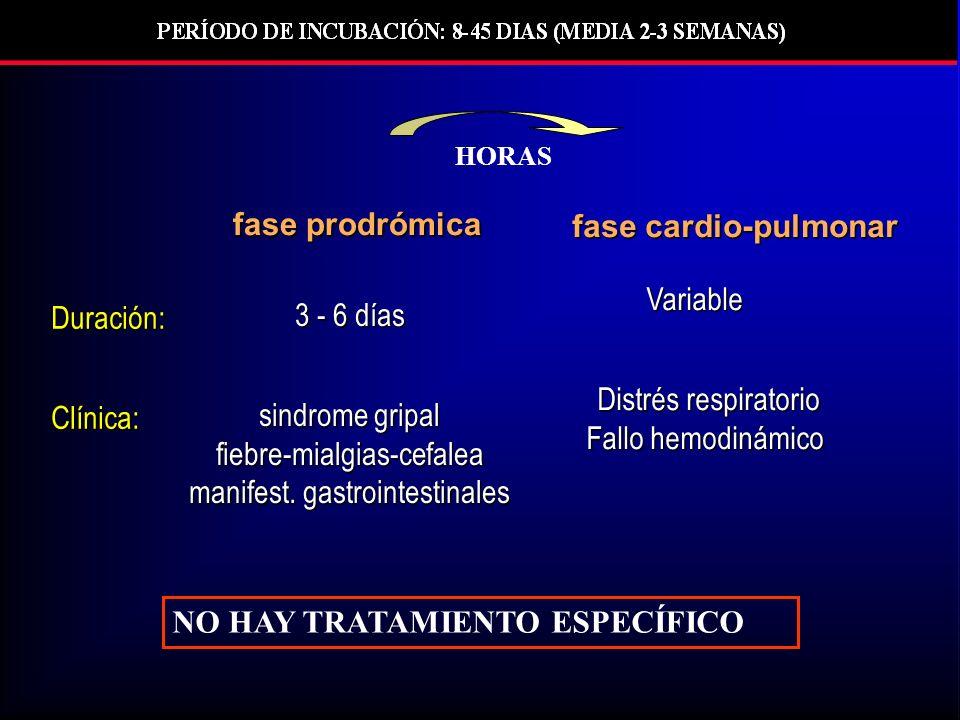NO HAY TRATAMIENTO ESPECÍFICO Duración:Clínica: 3 - 6 días sindrome gripal fiebre-mialgias-cefalea manifest.