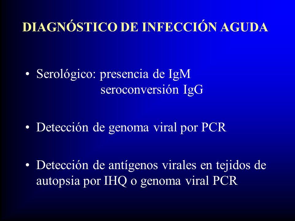 DIAGNÓSTICO DE INFECCIÓN AGUDA Serológico: presencia de IgM seroconversión IgG Detección de genoma viral por PCR Detección de antígenos virales en tejidos de autopsia por IHQ o genoma viral PCR