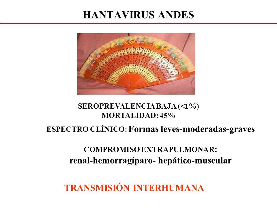 ESPECTRO CLÍNICO: Formas leves-moderadas-graves COMPROMISO EXTRAPULMONAR : renal-hemorragíparo- hepático-muscular HANTAVIRUS ANDES SEROPREVALENCIA BAJA (<1%) MORTALIDAD: 45% TRANSMISIÓN INTERHUMANA