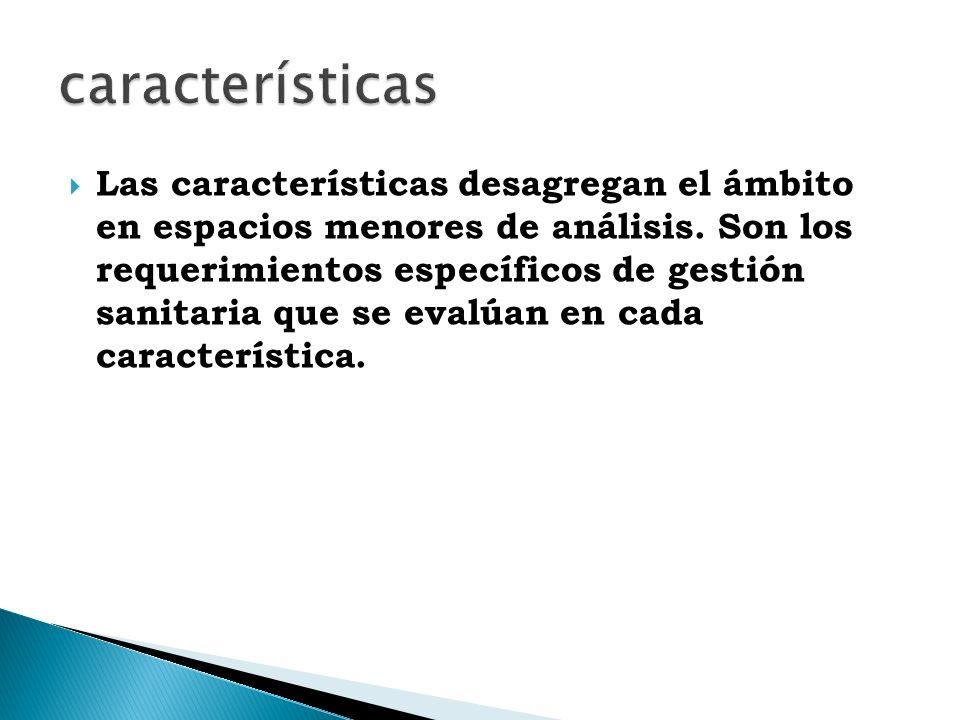 Las características desagregan el ámbito en espacios menores de análisis.