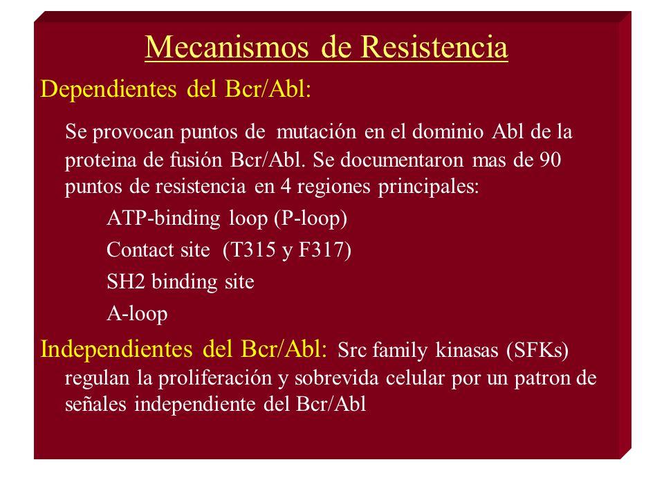 Mecanismos de Resistencia Dependientes del Bcr/Abl: Se provocan puntos de mutación en el dominio Abl de la proteina de fusión Bcr/Abl.