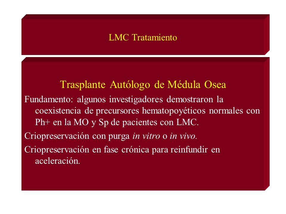 LMC Tratamiento Trasplante Autólogo de Médula Osea Fundamento: algunos investigadores demostraron la coexistencia de precursores hematopoyéticos normales con Ph+ en la MO y Sp de pacientes con LMC.