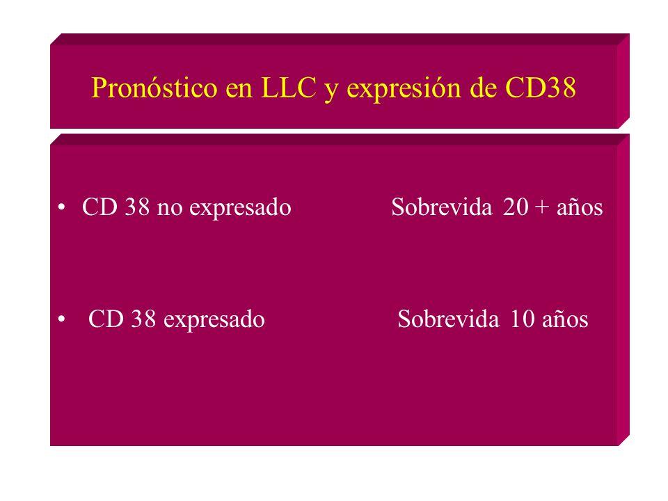 Pronóstico en LLC y expresión de CD38 CD 38 no expresadoSobrevida 20 + años CD 38 expresado Sobrevida 10 años